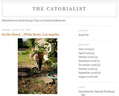 The Catorialist